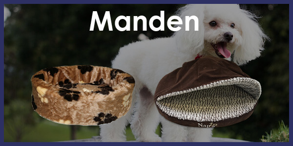 Manden