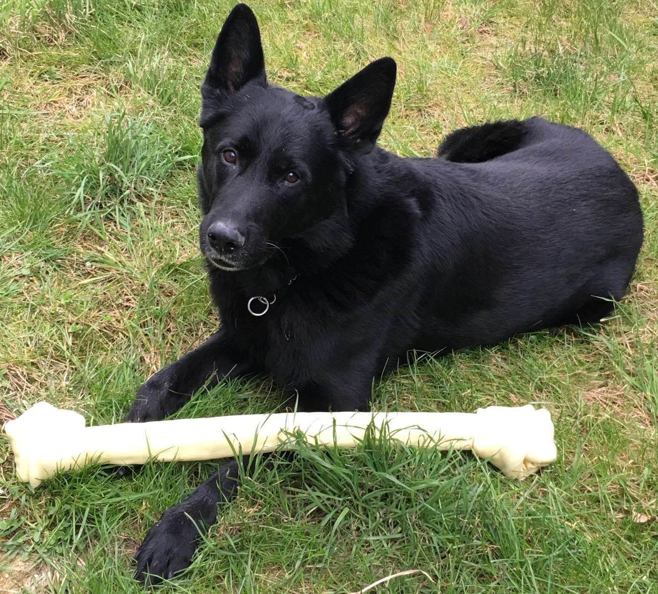Knoopkluiven zijn natuurlijke en hoogwaardige kauwkluiven.  Geen toevoegingen, zuiver natuurlijk product Ongelooide binnenste huidlaag van runderen (Rawhide) Voor lang kauwplezier. Voor een schoon gebit en ter voorkoming van tandplak. De natuurlijke tandenborstel van je hond. Volledig verteerbaar. De mooie hond op de foto's wordt niet meegeleverd!