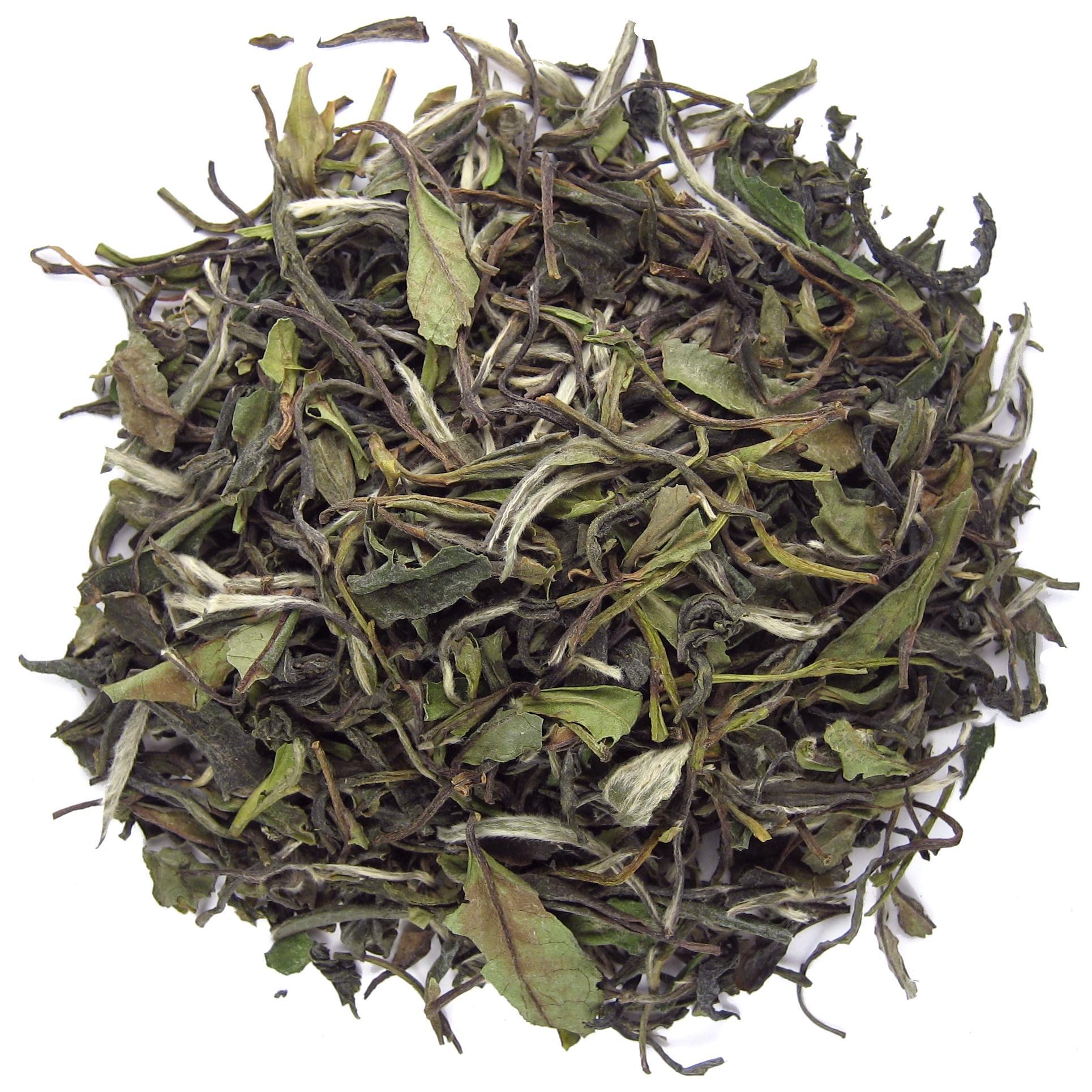 De Witte Trots van China - 1 - Trending Tea